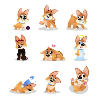Set of cartoon corgi. funny little dog in different actions. walking, wondering, sleeping, growling, playing, crying, angel and evil. domestic animal. flat   design
