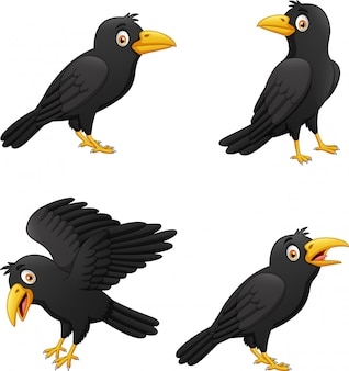 Set of cartoon crow with different expressions