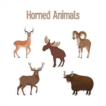 Set of cartoon cute horned animals. impala, urial, deer, yak, elk