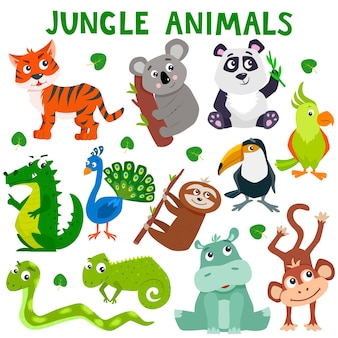 Set of cartoon cute jungle animals