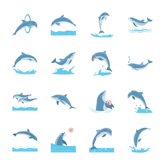 Set of cartoon dolphins