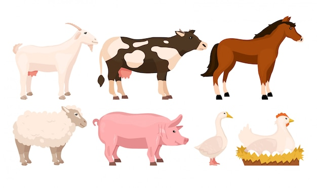 Set cartoon domestic animals. goat, cow, horse, sheep, pig, goose, hen. rustic farm concept.