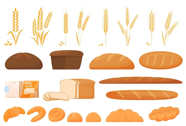 Set of cartoon food: ciabatta, whole grain bread, bagel, french baguette, croissant and so.