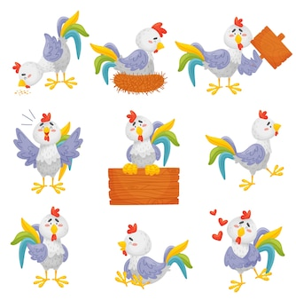 Set of cartoon gray roosters with a multi colored tail in different situations