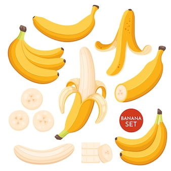 Set of cartoon illustration yellow bananas. single, banana peel and bunches of fresh banana fruits.