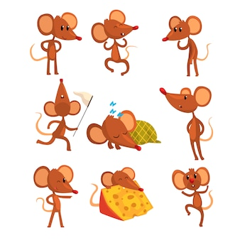 Set of cartoon mouse character in different actions. running with sweep-net, sleeping, eating cheese, jumping, winking eye. little brown rodent.