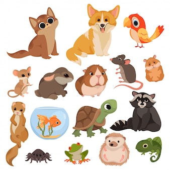 Set of cartoon pets. collection of various domestic mammals, rodents, birds, reptiles.