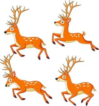 Set of cartoon reindeers