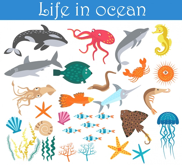 Set of cartoon sea animals fish