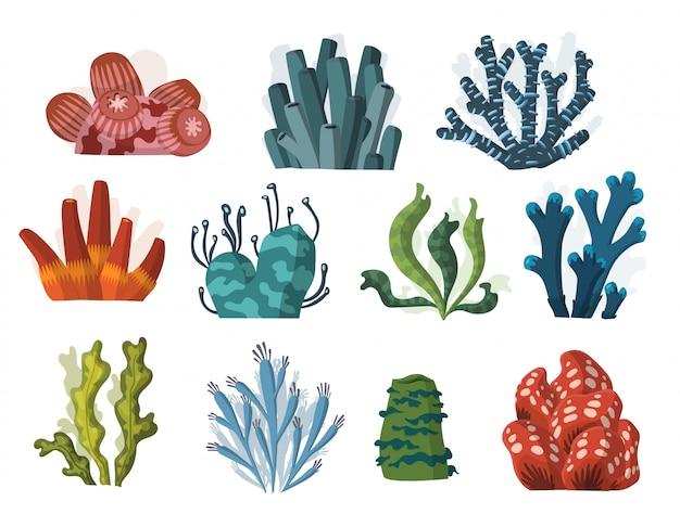 Set of cartoon underwater plants and creatures.