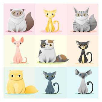Set of cat family