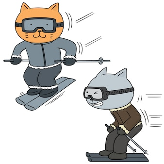Set of cat skiing