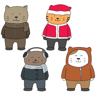 Set of cat in winter clothes