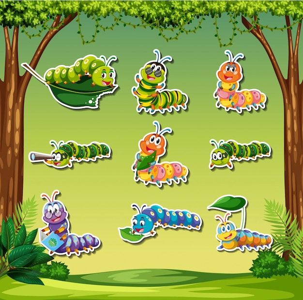 Set of caterpillar sticker on forest background