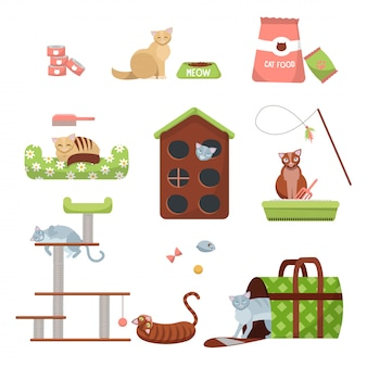 Set of cats care stuff: scratching post, house, bed, food , toilet, slipper, carrier and toys with 7 cats. pet shop cat accessories.