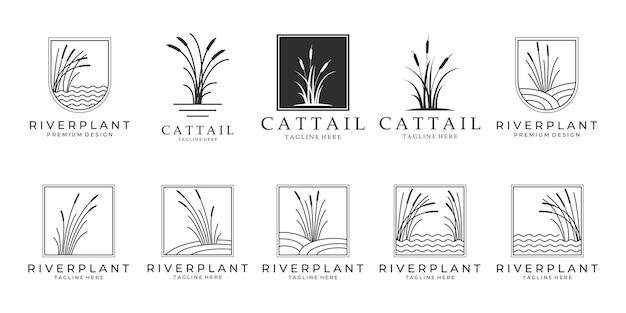 Набор векторных иллюстраций пакета логотипов «рогоз», значок «рогоз».