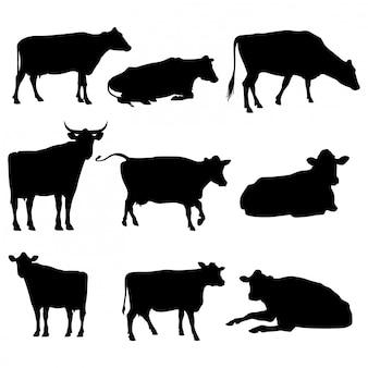 Набор силуэтов крупного рогатого скота, изолированные на белом