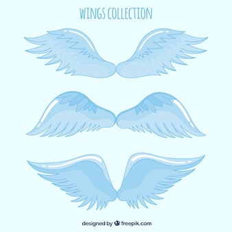 Set of celestial hand drawn wings