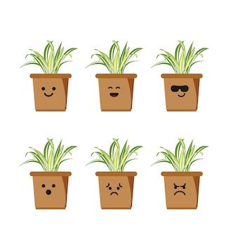 Set character spider plant illustration Premium Vector