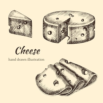 チーズの手描きスライスとグレープシンのビンテージスタイルを設定します。スケッチ。図
