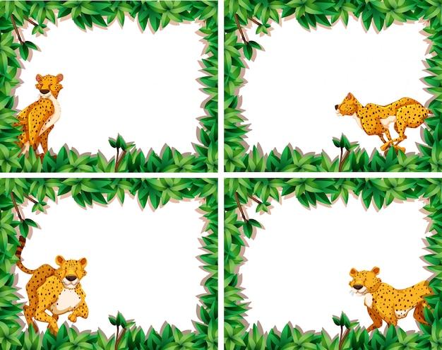 Set of cheetah on nature frame