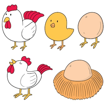 Set of chicken and egg