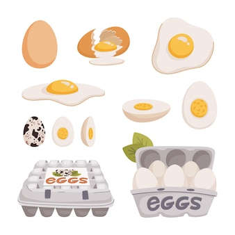 Set of chicken and quail eggs in different forms raw, boiled and fried and in carton boxes.