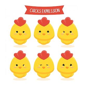 Set of chicks expression illustration