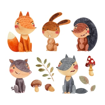 A set of childrens watercolor illustrations with forest animals fox wolf wild boar hare