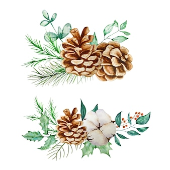 ユーカリとモミの枝と松ぼっくりの水彩イラストでクリスマスの花束を設定します。
