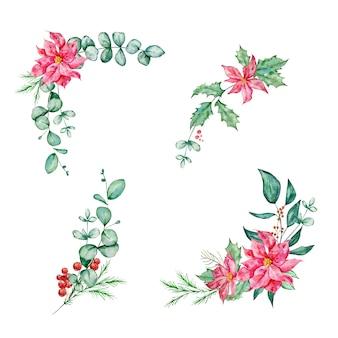 ユーカリのポインセチアとトウヒの枝とヒイラギの水彩イラストでクリスマスの花束を設定します。