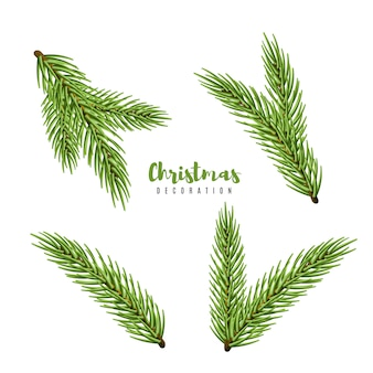 Set christmas tree isolated on white background, pine fir branches.  illustration