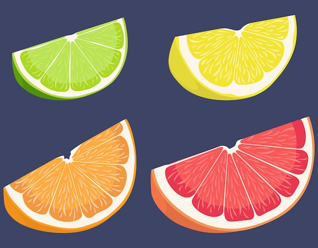 Set of citrus fruits. lemon, lime, orange and grapefruit in cartoon style.