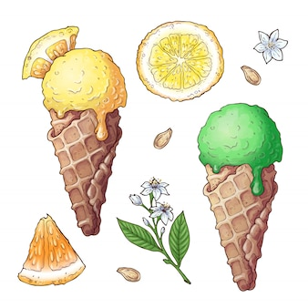 Set of citrus ice cream