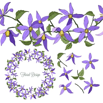 Set of clematis floral elements isolated