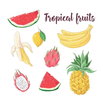 Set of cocktail ice cream and tropical fruits. vector illustration