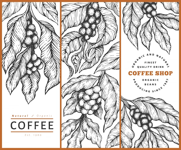 Set of coffee vector template