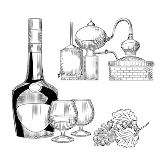 Set of cognac in hand drawn style. bottle of cognac, snifter, bunch of grapes, alembic.
