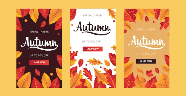 Set collection for autumn sale vertical background layout decorate with leaves for shopping sale or promo poster and frame