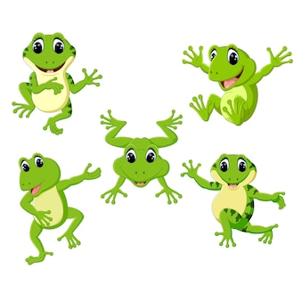 Set collection cute frog cartoon