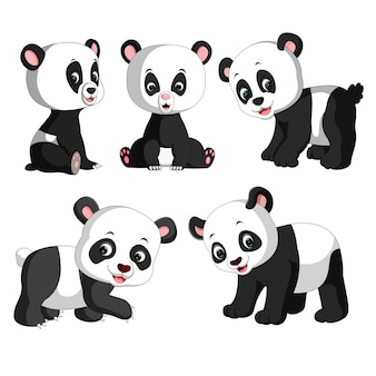Set collection cute panda cartoon