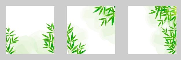 リアルな緑の竹の木の葉の水彩画の背景のコレクションを設定します。