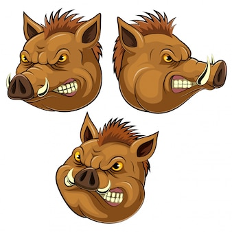 Set collection of wild boar head mascot