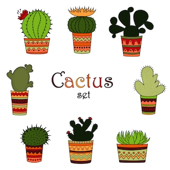 A set of color cactuses in pots in the mexican style.