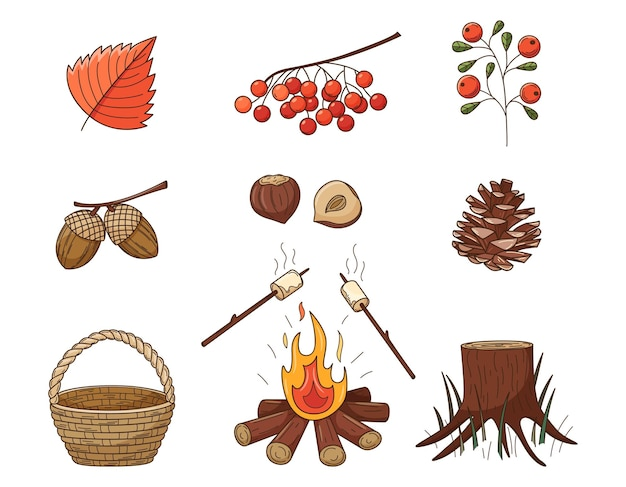 A set of colored doodles. forest, autumn decorative elements with a stroke and fill