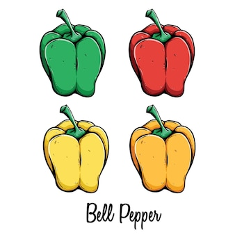 Set of colored green red yellow and orange bell pepper with text or name on white backgrou