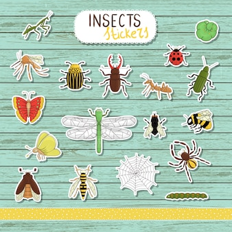 Set of colored insect stickers on blue wooden . collection of isolated on white background bright bee, bumble bee, may-bug, fly, moth, butterfly, caterpillar, spider, ladybug