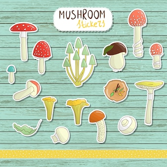 Set of colored mushroom stickers on blue wooden . collection of isolated bright aspen, orange-cup, champignon, chanterelle, toadstool, death cap, fungus. food elements cartoon style.
