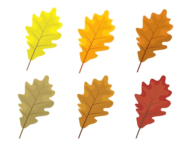 Set of colorful autumn leaves. cartoon and flat style leafs