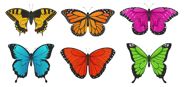 Set of colorful butterflies. illustration.